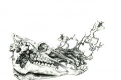 Mrtvolnost